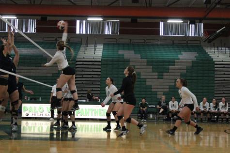 Women's volleyball pummels the Bulldogs