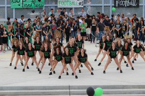 The athleticism required to perform as these dancers did during Winter Spirit Week justify recognizing dance as a sport.