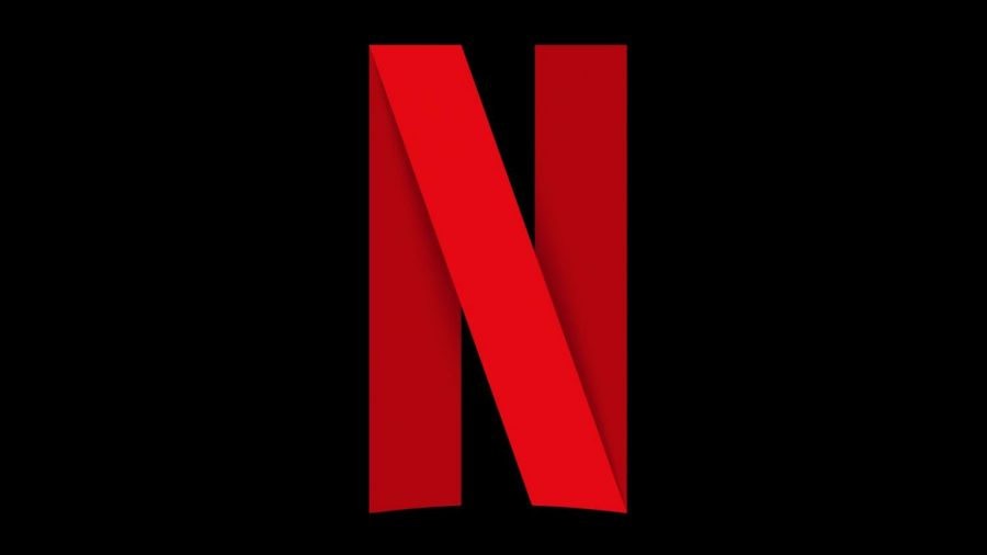 Netflix V.S. Tik Tok in Quarantine